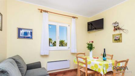 Apartment Ani nr. 1