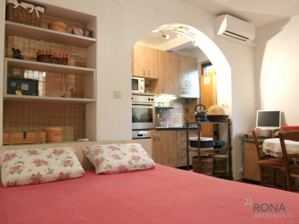 Apartment studio Ena